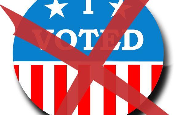 voting_Ally McAlpine