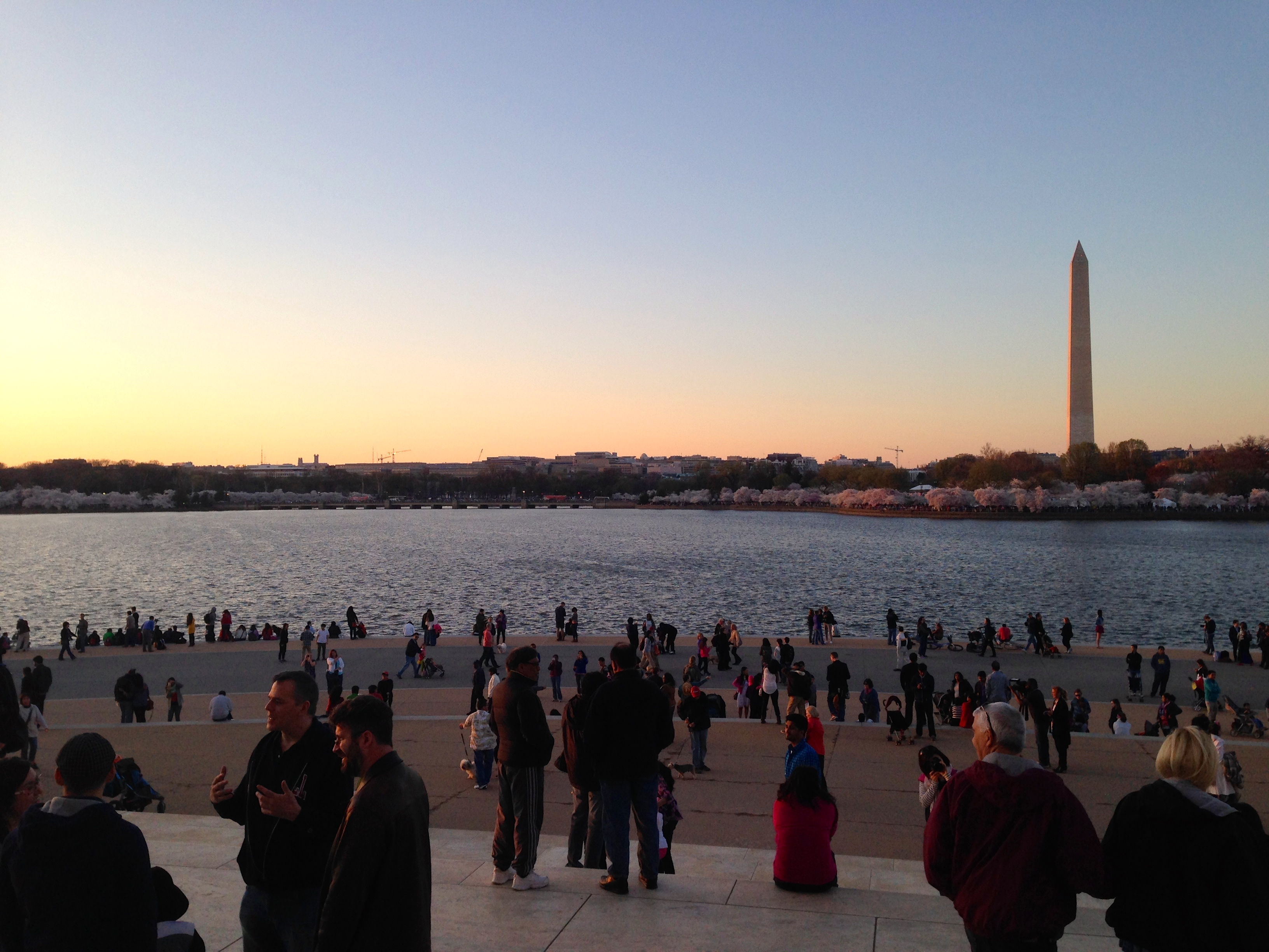 View of the Washington Monument from the tidal basin. PC: Naomi Folta